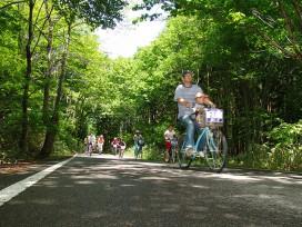 森サイクリング